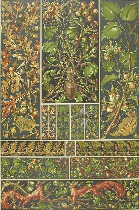 хромолитографии художника Anton Seder - 05